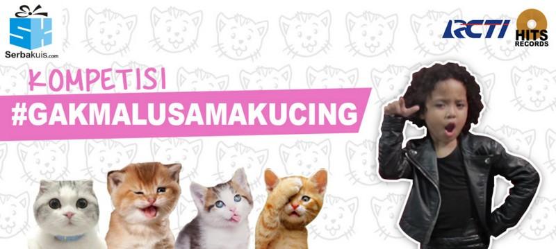 Kompetisi Gak Malu Sama Kucing